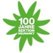 Logo DAV 100 Jahre